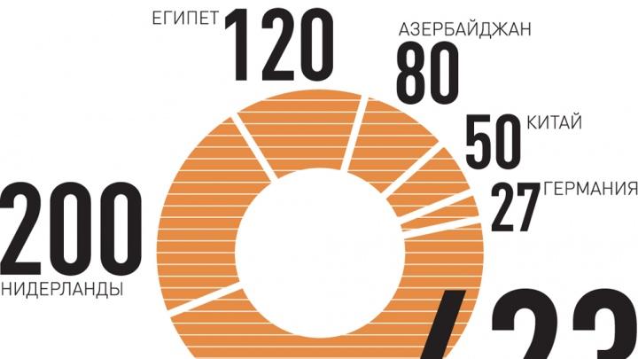 Украинская картошка Челябинску не нужна