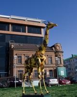 АФ Банк привез в Уфу жирафа!