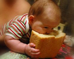 Хлеб дешевле не станет