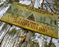 Татарстанские леса из-за пожароопасности ограничены для посещения