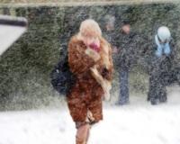 Из-за ухудшения погоды МЧС просит водителей не выезжать за город