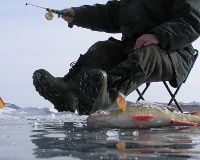 Рыбалку на Цимлянском водохранилище покажет международный телеканал