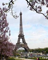 В публичной библиотеке пройдет фотовыставка «Париж с любовью»