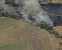 Больше половины леса сгорело, продолжается очаговое горение