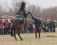 На старый Новый год в Старочеркасской сварят 15 тысяч вареников
