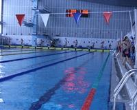 Первенство области по плаванию проходит в Ростовском «Коралле»