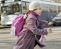 Муниципалитеты смогут обеспечивать безопасность дорог