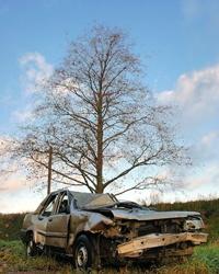 Столкновение с деревом унесло две жизни