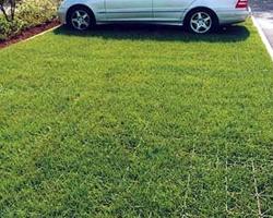 Волгоградцев заставят убрать машины из дворов