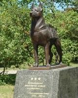 В Волгограде откроется первый в России памятник собакам-подрывникам