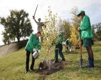 Виктор Зубков посадил первое дерево акции «Миллион деревьев»