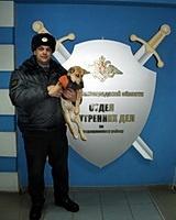 Городищенские полицейские ищут владельца собаки в жилетке
