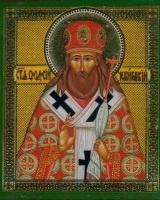 В Свято-Духов монастырь привезут мощи святителя Феодосия
