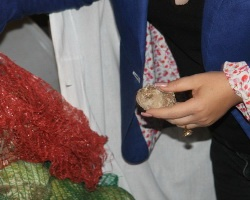 Волгоградских детей кормят червями и гнилыми продуктами