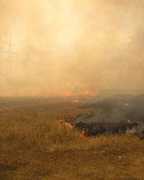 В Алексеевском районе Волгоградской области горит хутор