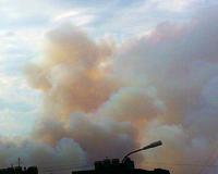В Городищенском районе горит лес, есть угроза для жилых домов