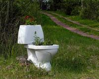 На российских дорогах появятся туалеты