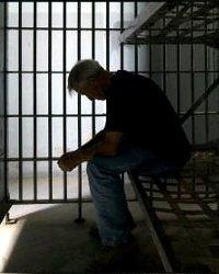 За оскорбление гаишника могут посадить в тюрьму
