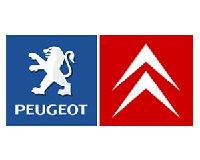 Peugeot и Citroen ищут в России место под новый завод