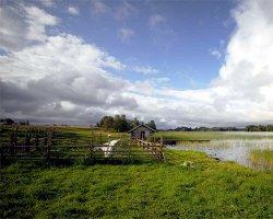 Сельский туризм: бизнес вдали от цивилизации
