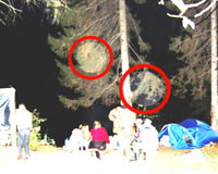 В Молебке обнаружили НЛО