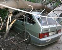 В Самаре ликвидируют последствия воскресного урагана