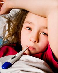 Объявлена охота на грипп