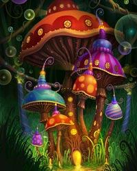 Сезон грибных дождей