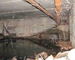 Комарово: вода в подвалах и ямы в асфальте