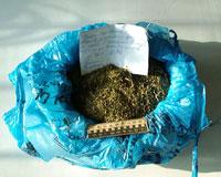 На улицы Тюмени не попало 30 килограммов наркотиков