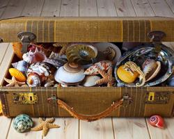 Отпуск – не перемещение тела