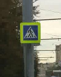 «Насадил» пешехода на капот