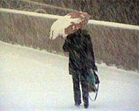 В Челябинской области ожидаются метели и сильный ветер