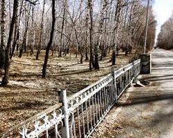 Суд постановил снести автостоянку в челябинском парке имени Тищенко