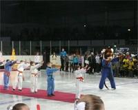Более 3000 детей побывали на спортивной и театральной елках в Челябинске