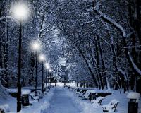 В Ярославле установится аномально холодная погода
