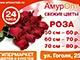 «АмурОпт»: первый гипермаркет цветов и букетов