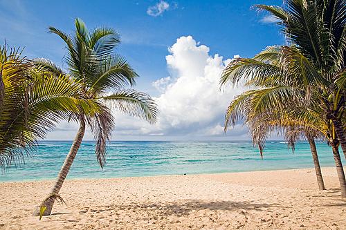 Лето-2012 будет вполовину дешевле