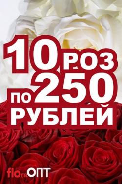 10 роз за 250 рублей!