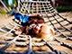 Долгожданный отдых в «Июле»