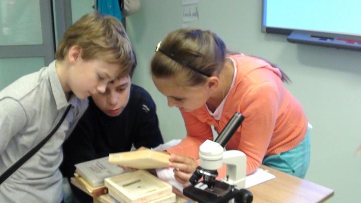 Новосибирцам предлагают учить английский по-новому